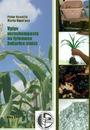 Vplyv vermikompostu na fytomasu kukurice siatej